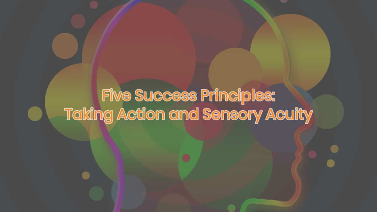 Taking Action and Sensory Acuity